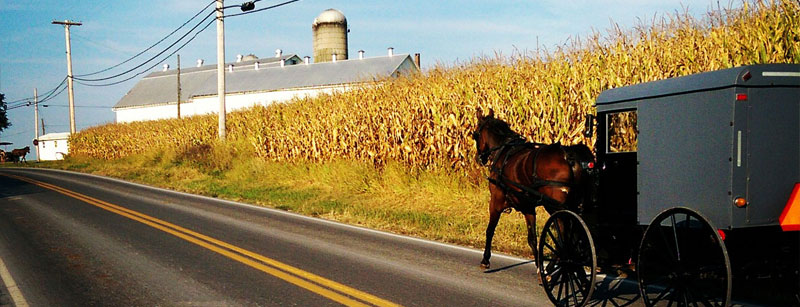 Horse and Buggy Lancaster County <em>Imagine Lancaster</em>